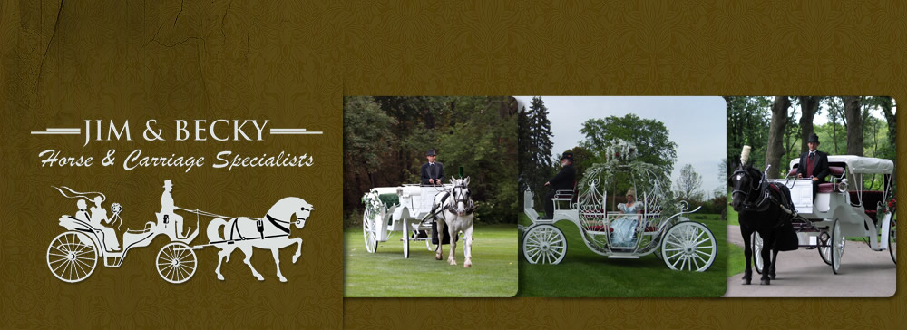 Jim & Becky's Horse and Carriage Service of Peotone, IL